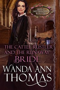 The Cattle Rustler And The Runaway Bride