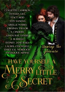 Have Yourself a Merry Little Secret