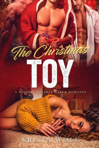 The Christmas Toy - A Holiday Reverse Harem Romance