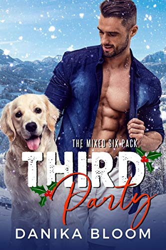 Third Party: A second chance, holiday romance